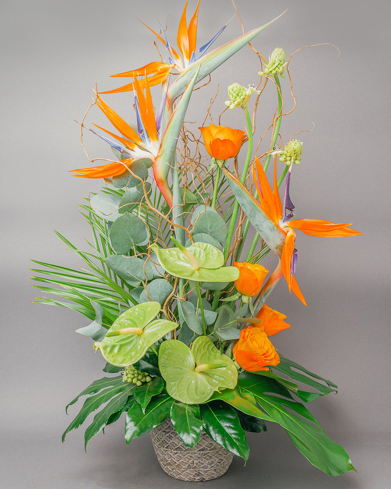 Birds of a feather arrangement