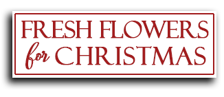 fresh flowers for christmas delivery dublin